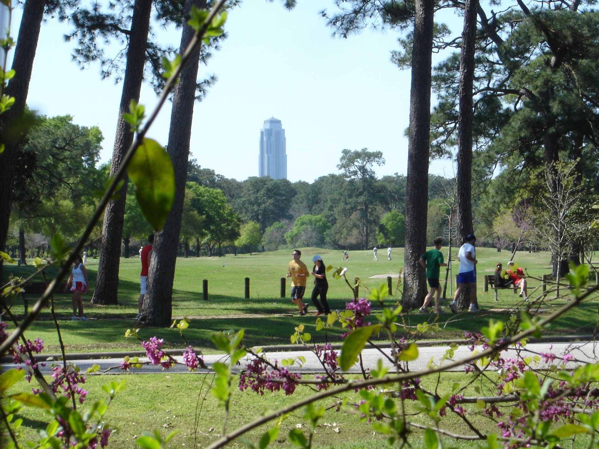 Top Hiking Trails Around Houston